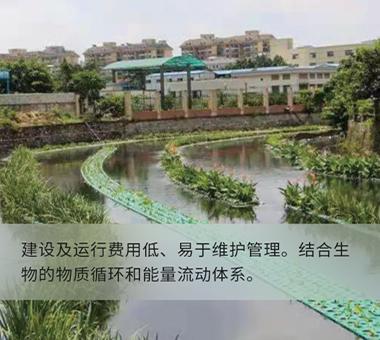 人工湿地示范工程