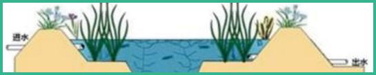 人工湿地,表面流人工湿地