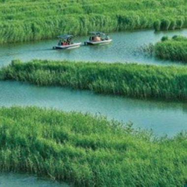地表水流域综合治理项目案例